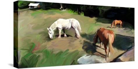 Guilford Horses I-Robert Mcclintock-Stretched Canvas Print