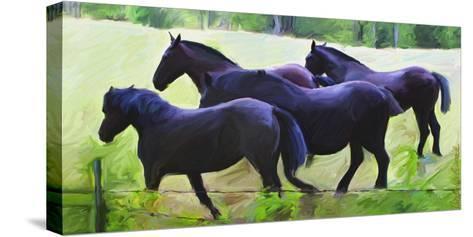 Guilford Horses II-Robert Mcclintock-Stretched Canvas Print