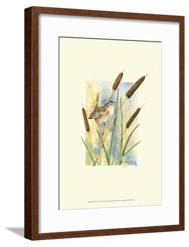 Marsh Wren and Cattails-Janet Mandel-Framed Art Print