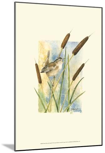 Marsh Wren and Cattails-Janet Mandel-Mounted Art Print