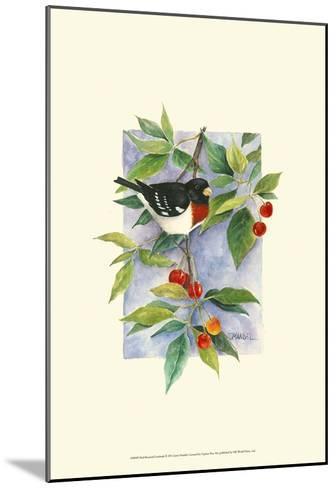 Red-Breasted Grosbeak-Janet Mandel-Mounted Art Print