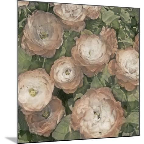 Ballerina Roses I-Chariklia Zarris-Mounted Art Print