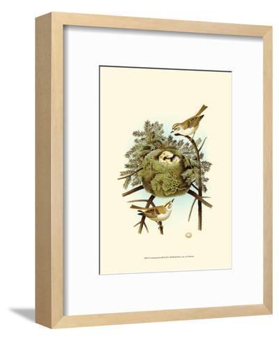 Feathering Nest III--Framed Art Print