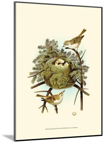 Feathering Nest III--Mounted Art Print