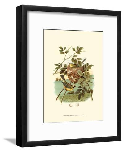 Feathering Nest IV--Framed Art Print
