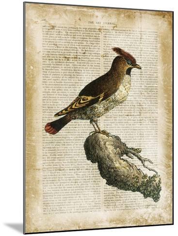 Antiquarian Birds III--Mounted Giclee Print