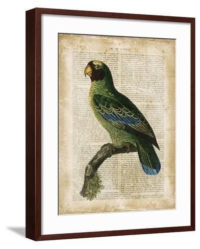 Antiquarian Birds VI--Framed Art Print