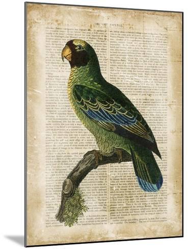 Antiquarian Birds VI--Mounted Giclee Print