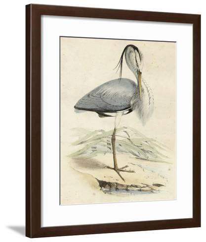Antique Heron IV--Framed Art Print