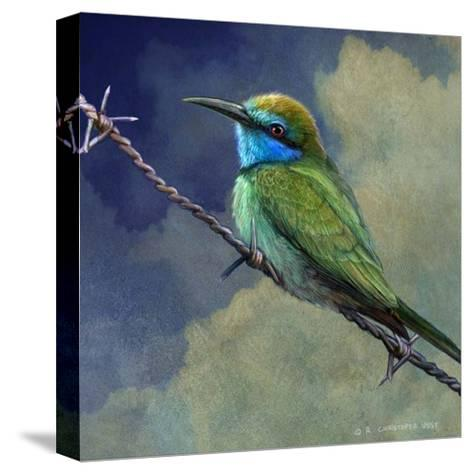 Bee Eater-Chris Vest-Stretched Canvas Print