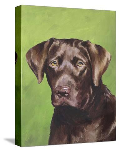 Dog Portrait, Chocolate-Jill Sands-Stretched Canvas Print