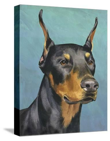 Dog Portrait, Dobie-Jill Sands-Stretched Canvas Print