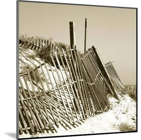 Fences in the Sand I-Noah Bay-Mounted Art Print