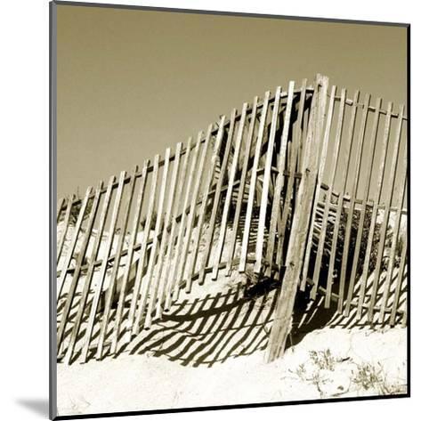Fences in the Sand II-Noah Bay-Mounted Art Print