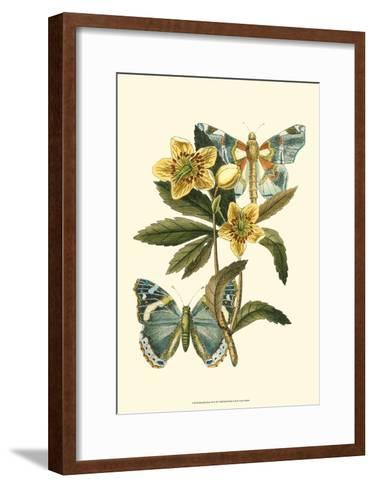 Butterfly Oasis III--Framed Art Print