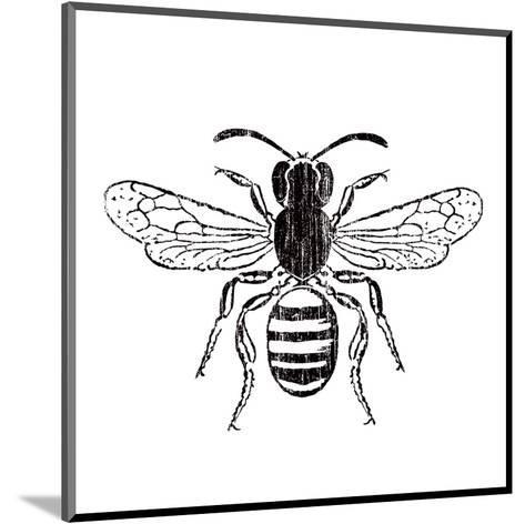Bee-Clara Wells-Mounted Art Print