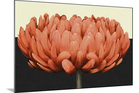 Apricot Flame II-Linda Wood-Mounted Art Print