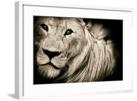 Mane Event-Bobbie Goodrich-Framed Art Print