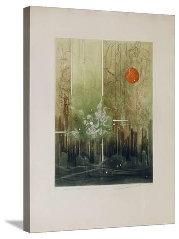 Math?matique Pour Une ?vasion--Stretched Canvas Print