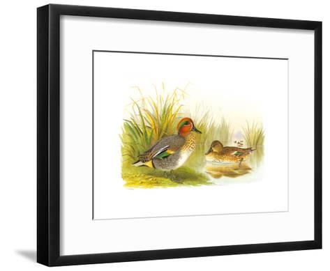 Ducks II-Henry Jones-Framed Art Print