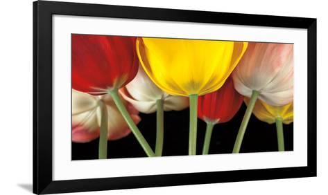 Sunshine Tulips-Assaf Frank-Framed Art Print