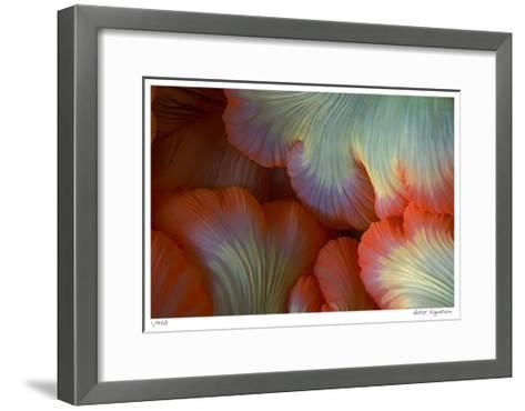 Sea Anemone-Jones-Shimlock-Framed Art Print