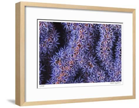 Seafan-Jones-Shimlock-Framed Art Print