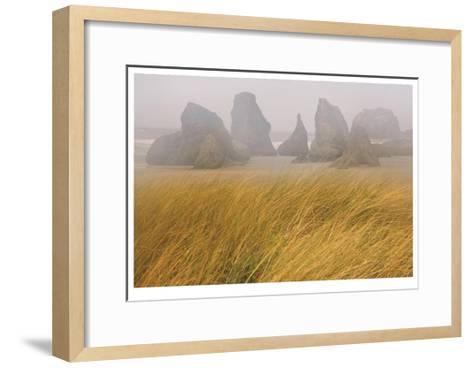 Seastacks and Fog-Donald Paulson-Framed Art Print
