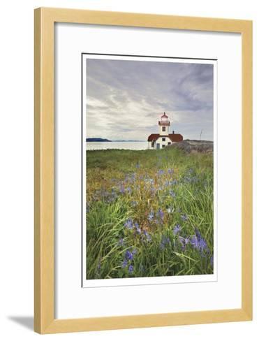 Patos Island Lighthouse I-Donald Paulson-Framed Art Print