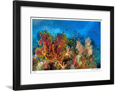 Reef Scenic 3-Jones-Shimlock-Framed Art Print