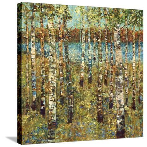 Purple Birch-Carmen Dolce-Stretched Canvas Print