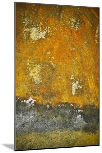 Rusty Look II-Jean-Fran?ois Dupuis-Mounted Art Print