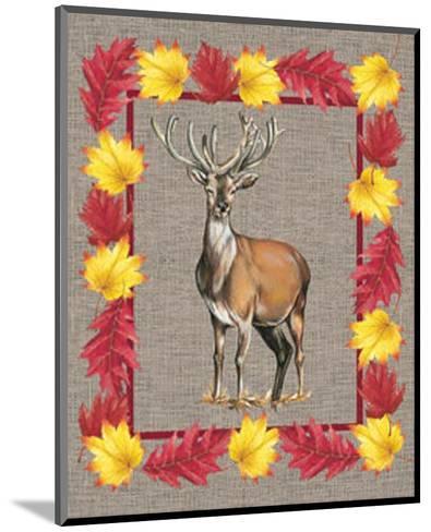 Nice Animals Deer--Mounted Art Print