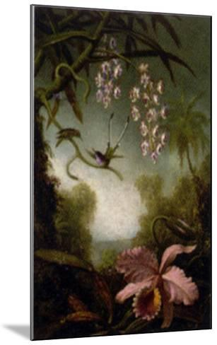 Orchids and Spray Orchids with Hummingbirds-Martin Johnson Heade-Mounted Art Print