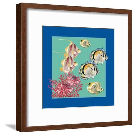 Fishes & Shells I--Framed Art Print