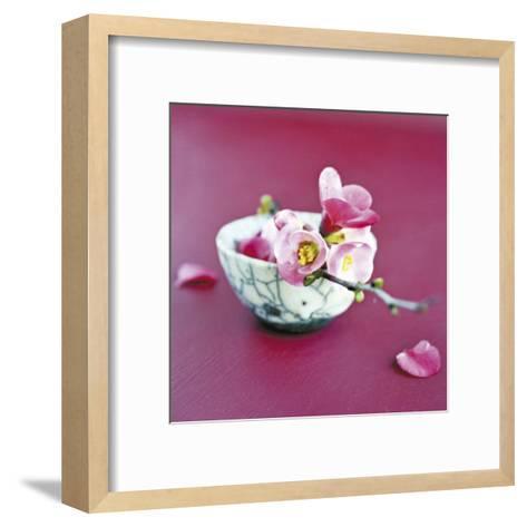 Brance et Raku-Amelie Vuillon-Framed Art Print