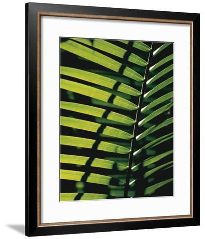 Tropicale-Catherine Thurel-Framed Art Print