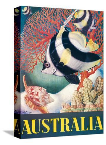 Australia, Great Barrier Reef c.1956-Eileen Mayo-Stretched Canvas Print