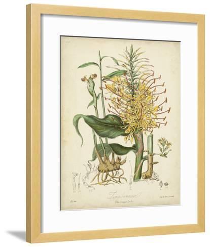 Twining Botanicals VII-Elizabeth Twining-Framed Art Print