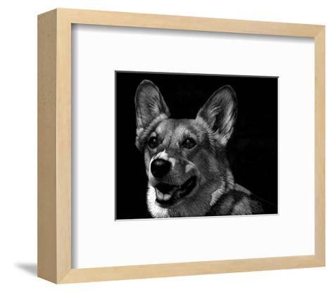 Canine Scratchboard XXIX-Julie Chapman-Framed Art Print
