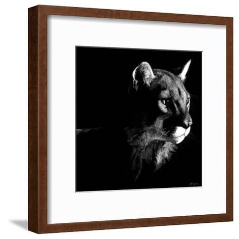 Wildlife Scratchboards VII-Julie Chapman-Framed Art Print