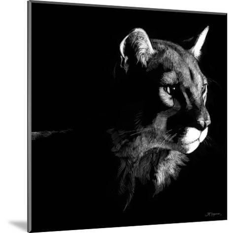 Wildlife Scratchboards VII-Julie Chapman-Mounted Art Print