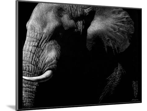 Wildlife Scratchboards III-Julie Chapman-Mounted Art Print