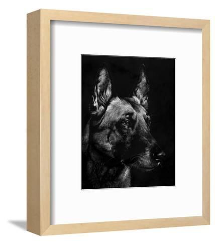 Canine Scratchboard V-Julie Chapman-Framed Art Print