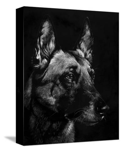Canine Scratchboard V-Julie Chapman-Stretched Canvas Print