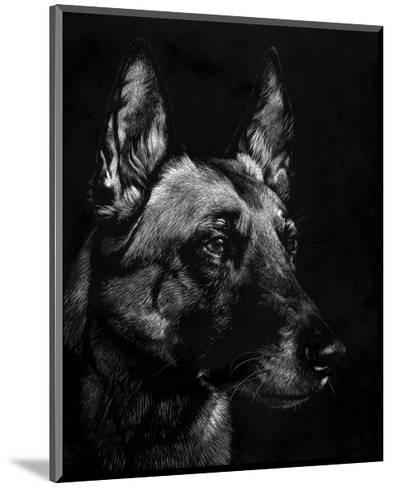 Canine Scratchboard V-Julie Chapman-Mounted Art Print