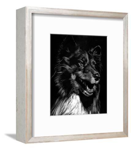Canine Scratchboard X-Julie Chapman-Framed Art Print