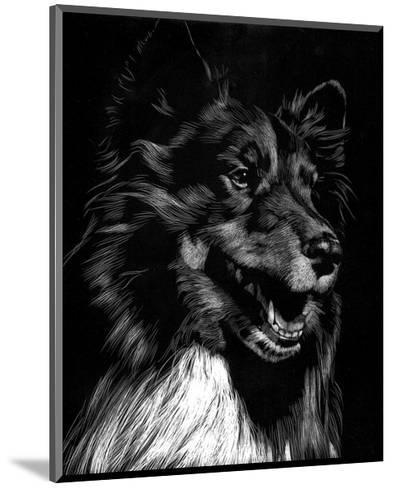 Canine Scratchboard X-Julie Chapman-Mounted Art Print