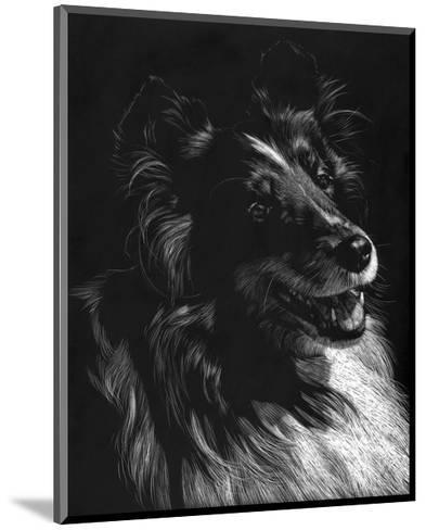 Canine Scratchboard XI-Julie Chapman-Mounted Art Print