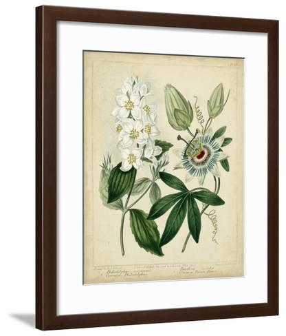 Cottage Florals II-Sydenham Teast Edwards-Framed Art Print